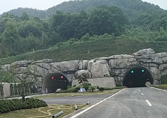 开车感受一下羽林隧道!社友一看视频说这洞口太恐怖