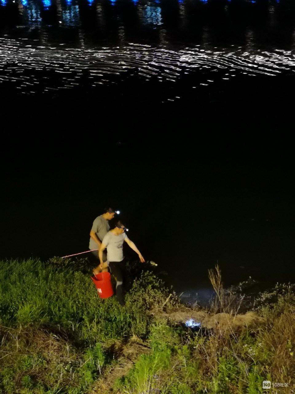 新昌江有啥宝贝?两男子拎着水桶带上网兜,摸黑在…