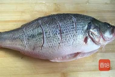 蒸鲈鱼时,很多人不懂这1步,难怪蒸出来的鲈鱼腥味重,肉质老