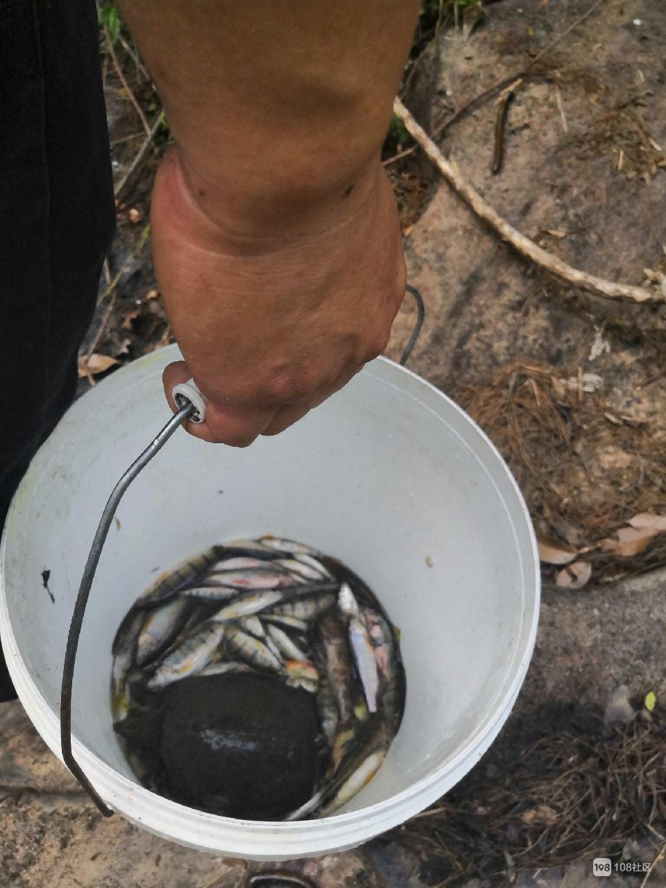 """美女跑到南门外钓石斑鱼,竟在水塘边意外捡到了""""宝"""""""