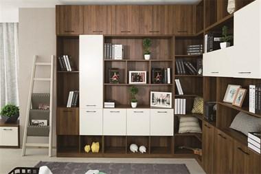 【盛泽全屋定制】全屋家具定制|衣柜|书柜|酒柜|榻榻米等