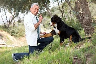农场上的日子:狗狗的奇妙第六感
