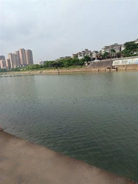 十八渡这群人往河里倒垃圾又捞上来 岸上还录像拍照!