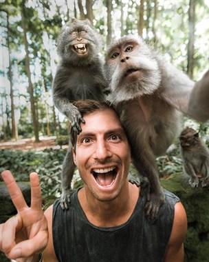 镜头感超好的动物们,能教教我你们在哪学的吗