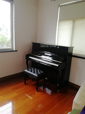 钢琴免费使用