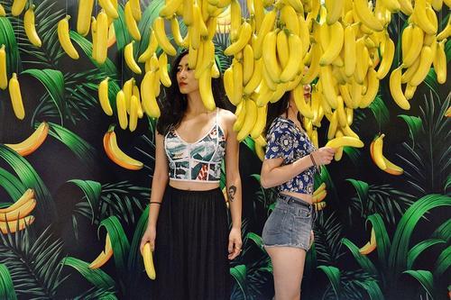 成精了!一棵香蕉树结了1500只香蕉,来多少人都吃不完