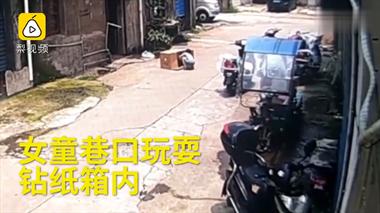 女童钻纸箱内玩耍被车碾轧,警方:司机负全责