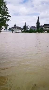 湖州杨家埠水淹成河!部分地段水已过腰,看着惊险!