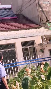 居民屋顶惊现一米多长鳄鱼,抓捕过程曝光!