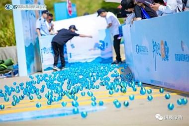 500个贻贝球奋力奔跑1.5米巨锅煮美味嵊泗贻贝节真有料