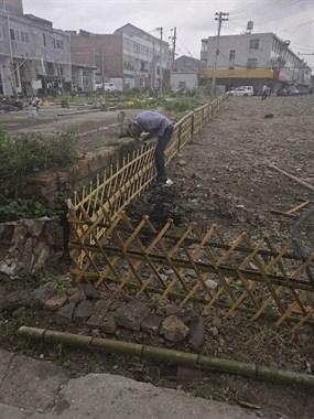 篱笆做起来,不知道要种什么花草树木