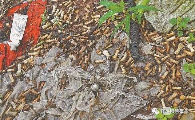 不寒而栗! 豪宅附近惊现2000多块人骨: 属于150人
