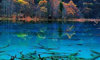 桃源深处的探秘之旅——小渔国河鲜