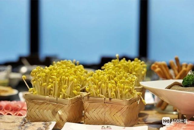 黄豆芽绿豆芽,营养差别竟然这么大?你吃对了吗