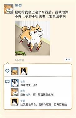 主人冒死偷看了狗狗的朋友圈,结果…笑到猪叫!
