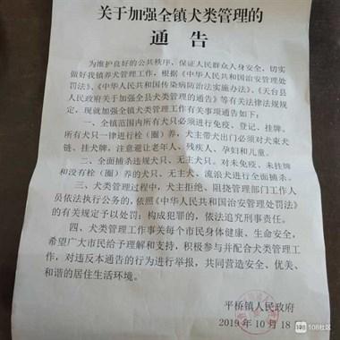 @天台人 政府发了通告 这些类型的狗全面捕杀