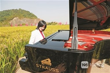 洛舍有美女在稻田里弹钢琴