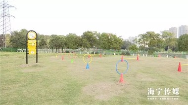 最新!海宁首个公共遛犬区启用!有半个足球场大!