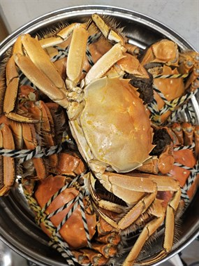 6只螃蟹65元一餐全干完!肉价疯涨,你愿意吃蟹还是肉?