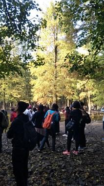 梅坞岭环线古道+百鸟乐园池杉林