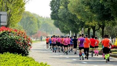 """平时一次最多跑个十几公里的也去""""跑马"""",简直是不要命!"""