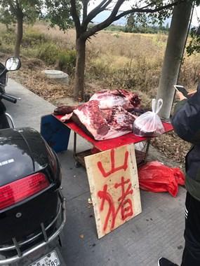 众人围观!尖山有人卖这种猪肉,35一斤还抢着买