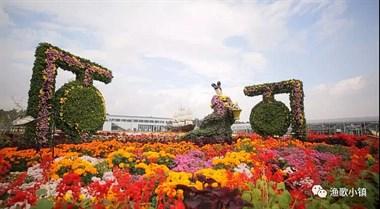 11月17渔歌小镇菊园、义乌进口商城,送价值128元吹风