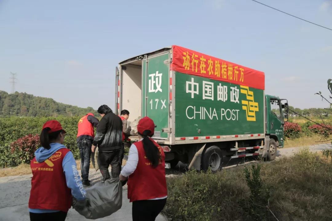 海宁邮政万斤橘子免费送,背后这事让人肃然起敬!