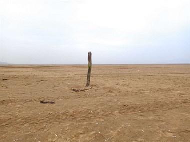 """40年以来严重干旱!鄱阳湖干旱""""变""""沙漠 社友实拍吓一跳"""
