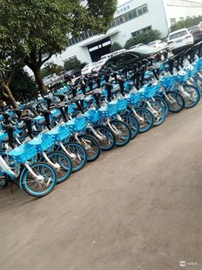 嵊州745辆共享单车被扣,全被城管拉到这里!只因…