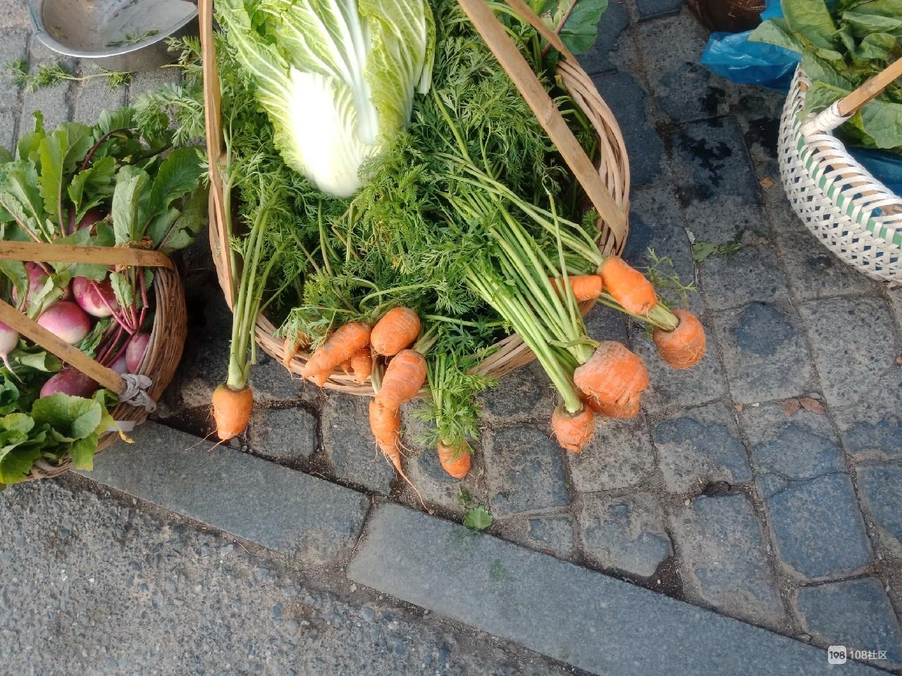 孤独老人卖菜为生,长兴女子倍感心酸,立即做出善事!