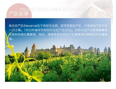 潘普洛干红葡萄酒