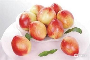 油桃孕妇能吃吗?吃油桃注意事项