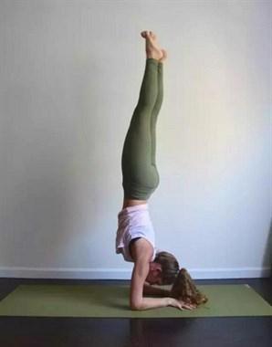 """练好瑜伽""""手肘倒立""""经典5步曲(收藏级)坤阳瑜伽教练培训"""