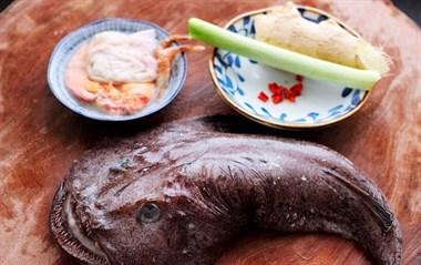酱焖安康鱼,虽然它很丑,味道却是一流