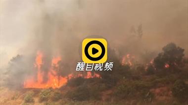 千人救援!佛山高明突发山火仍在扑救…现场视频揪心