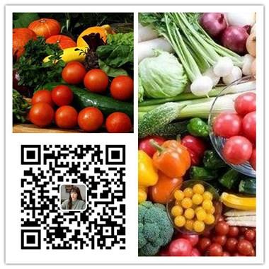 上海江桥市场蔬菜价格:涨了涨了!行情摆脱11月的平静如水