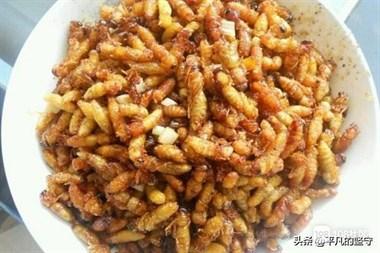 云南昆虫宴