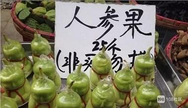 它被误认为是难吃的水果!那是因为很多人没吃过树上熟的