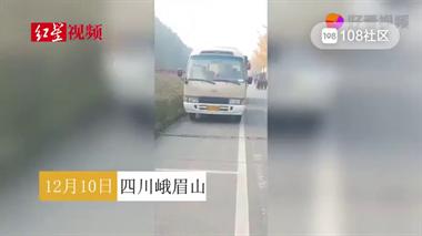 大白天和人在公交后排做不雅事 当事司机被停职调查