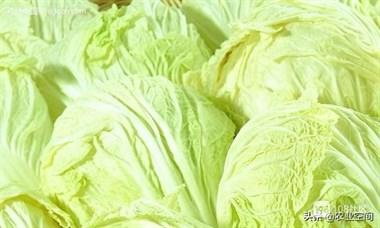 农村大白菜吃腻了怎么办?六种大白菜的做法,让你在冬天吃个爽