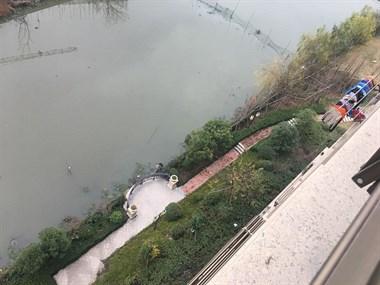 乾元明月星城有人在河里偷干这事!明知犯法还胆子噶大?