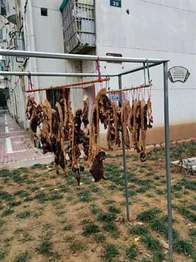 土豪准备的年货!衢州这街上挂满了腊猪鸭肉,看得走不动路