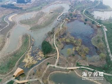 海宁新建一湿地公园,26个足球场大,在你家附近吗