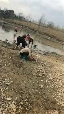 大阵仗!艇湖公园大群人拎着桶来,抢着挖这宝贝!