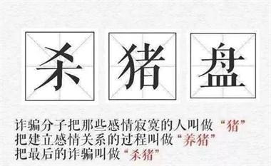 """15.6万元不翼而飞!嵊州女子惨遭网恋男友""""杀猪"""""""