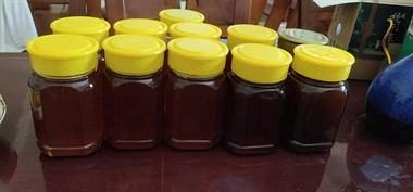 野生土蜂蜜,送人自吃首选