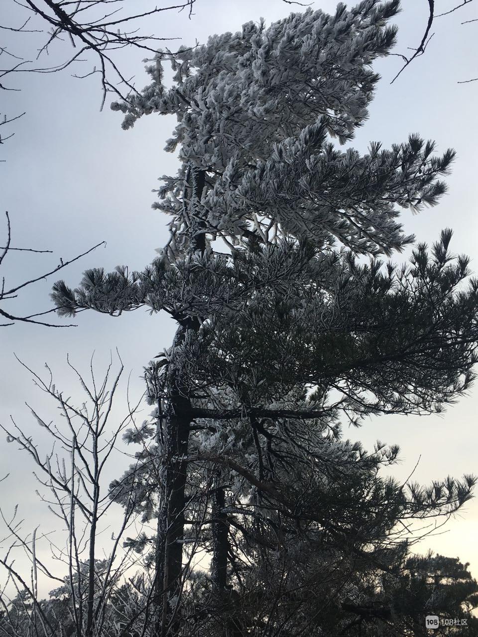 气温降至0°,天姥山上出现奇观!大师天不亮就赶去