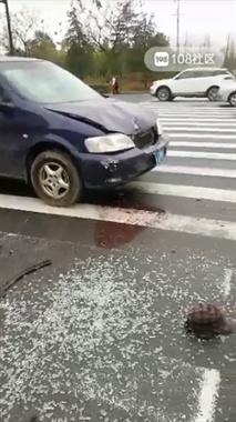 巨化路一别克车闯祸了!电三轮翻车玻璃全碎,骑车人…