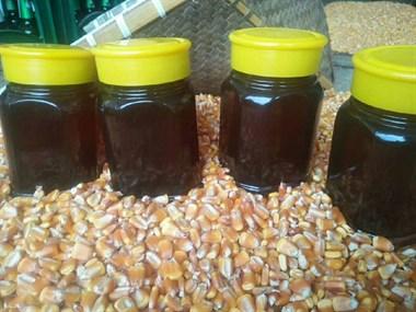 野生土蜂蜜,送人自吃都不错